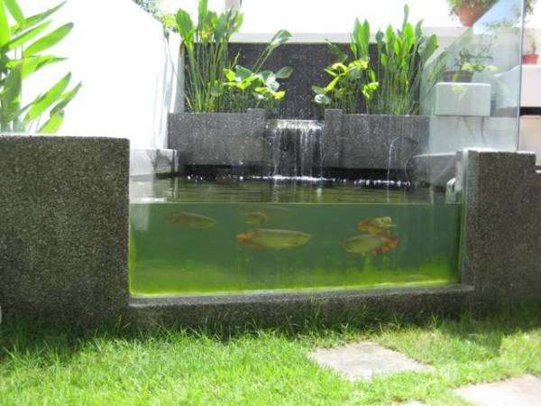 33.04mm Toughened Triple Laminated Kio Pond Window